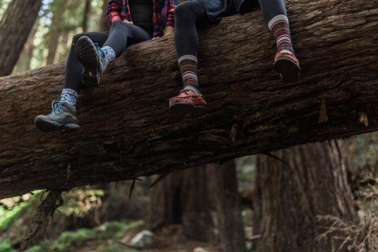 Vakantievriendje, Kamperen, Op Avontuur, Zitten in een boom