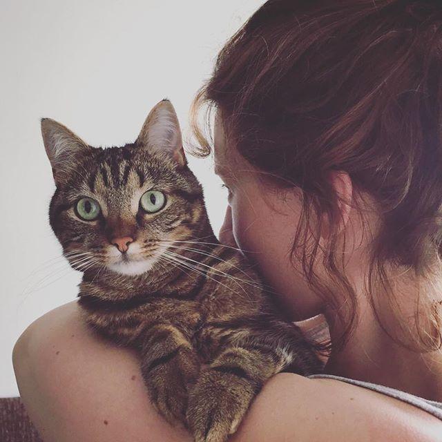 Lied van een Kattenvrouwtje, Anne en Kroepoek