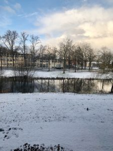 Sneeuw, Week 9 Februari 2020