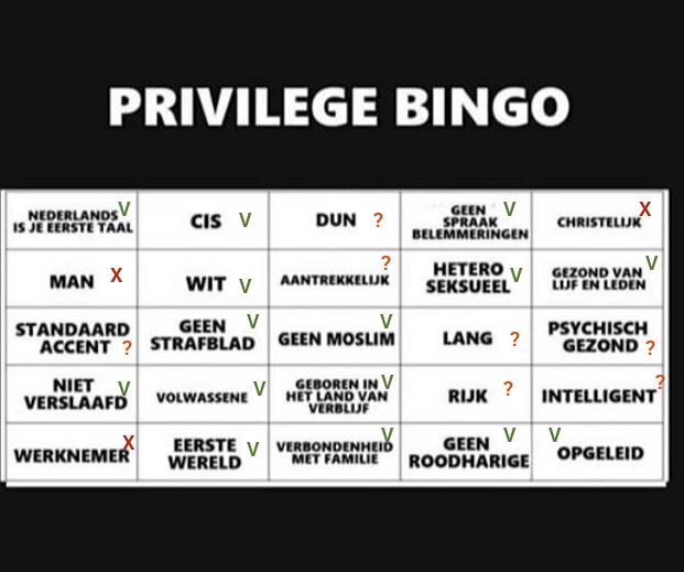 Privilege Bingo Nederlands, Ingevuld